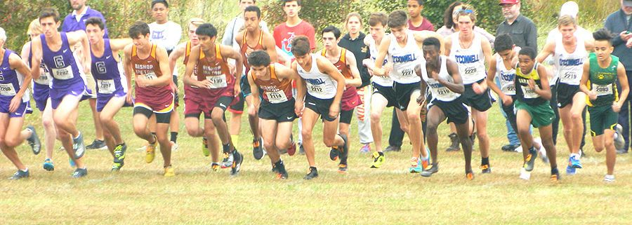 O'Connell cross country 3