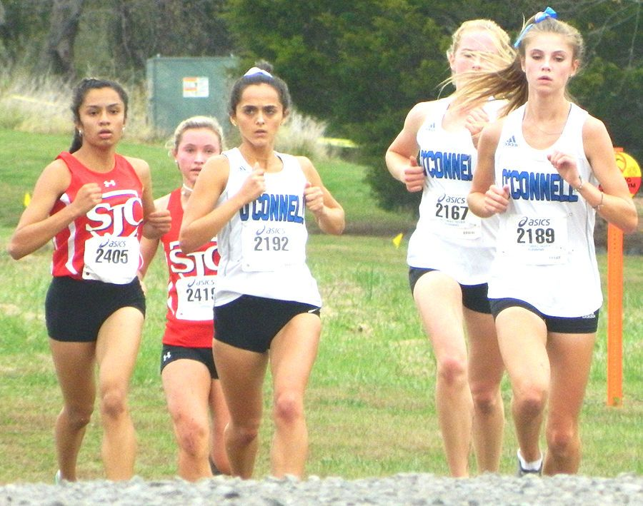 O'Connell cross country 6